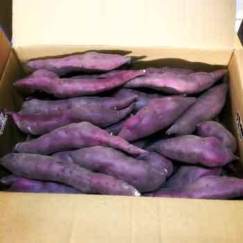 野菜・きのこ, サツマイモ  5kg 2S3S
