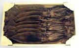 西海水産:能登の手作り伝統と自然の味「丸干しいか500g」