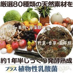 果穀草菜・和漢植物・乳酸菌