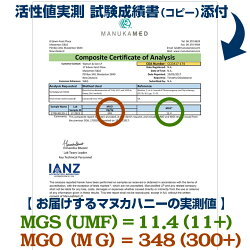 MGS10+