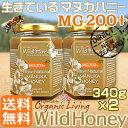 マヌカハニー 貴重な生タイプ【MG200+】酵素が生きている天然マヌカ蜂蜜[ワイルドハニー] 340g×2本set【送料無料】