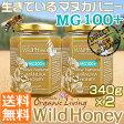 マヌカハニー 貴重な生タイプ【MG100+】送料無料2本セット酵素が生きている天然マヌカ蜂蜜[ワイルドハニー]340g×2