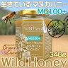 マヌカハニー 貴重な生タイプ【MG100+】酵素が生きている天然マヌカ蜂蜜[ワイルドハニー] 340g