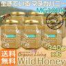マヌカハニー 生タイプ【MG100+】酵素が生きている天然マヌカ蜂蜜[ワイルドハニー]お得な340g×6本セット