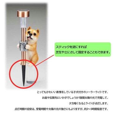 【ガーデンライト】ガーデンソーラーライト 庭 屋外 照明 ランプ ガーデンライト ソーラーライト 外灯 ライト 簡単設置 スタンドタイプ 子犬付 532P17Sep16