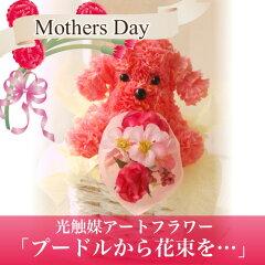 遅れてごめんね光触媒アートフラワー「プードルから花束を・・・」【遅れてごめんね母の日ギフ...