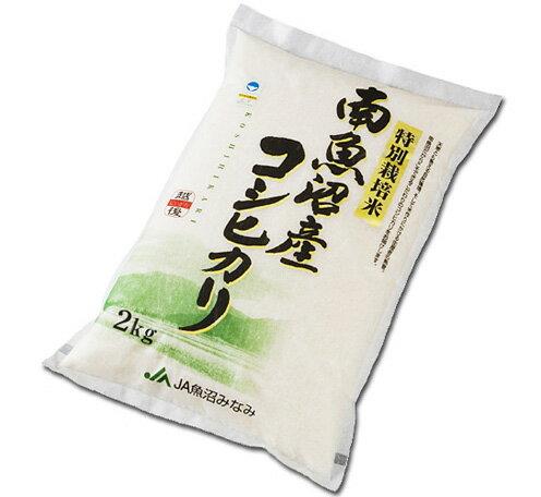 米・雑穀, 白米  8 2kg