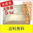 業務用5キロ 乾燥こんにゃく米(ゼンライス) 誰だって波乱爆笑 IKKOさんも使っている石井さんの乾燥 こんにゃく米  こんにゃくごはんダイエット米ご飯にご利用下さい【送料無料】※マンナンヒカリではありません。業務用 糖質制限ダイエットに こんにゃく米 !asu