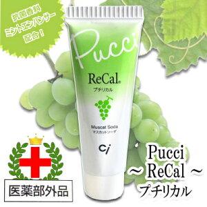 プチリカル【医薬部外品】歯磨き粉 5個セット[代引不可]