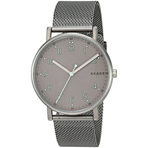 スカーゲン Skagen 腕時計 Skagen Men's SKW6354 Signatur Titanium and Steel-Mesh Watch