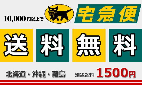 ケルヒャー『K3サイレントベランダ東日本/50HZ地域用(1.601-448.0)』