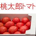桃太郎トマト 400g