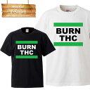 マリファナ 大麻 420 cannabis カンナビス weed ganja ガンジャ THC BURN 緑 バッズ シンセミア ジョイント ハシシ Tシャツ メール便 送料無料 メンズ レディース