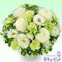花キューピット【ペット用フラワーギフト・お供え】ng01-1...