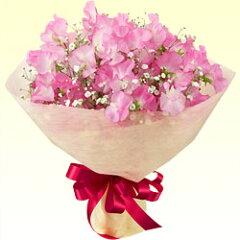 ふわふわピンクのスイートピーブーケです♪【出産祝い】ye00-511095ピンクスイートピーのブーケ...