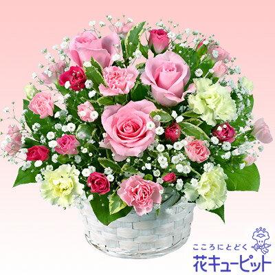 花キューピット【誕生日フラワーギフト】ya00-511116ピンクバラのアレンジメント【あす楽対応_北海道】【あす楽対応_東北】【あす楽対応_関東】