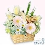 春のガーデンバスケット花キューピット