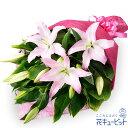 花キューピット【お祝い】yc00-511567ユリの花束