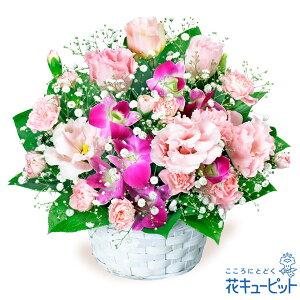 トルコキキョウとデンファレのアレンジメント花キューピット