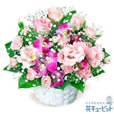 花キューピット【お祝い返し】yu00-511587トルコキキョウとデンファレのアレンジメント