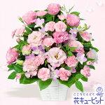 トルコキキョウのピンクアレンジメント花キューピット
