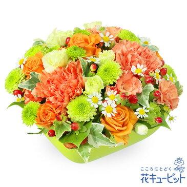 花キューピット【10月の誕生花(オレンジバラ等)】ya10-511854オレンジバラとカーネーションのアレンジメント