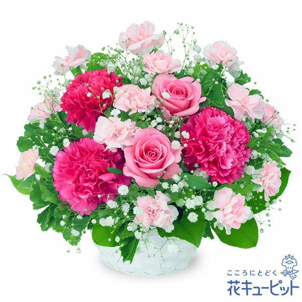 誕生日フラワーギフト・ピンクバラのアレンジメント 511964  花キューピットのお花のギフトランキング