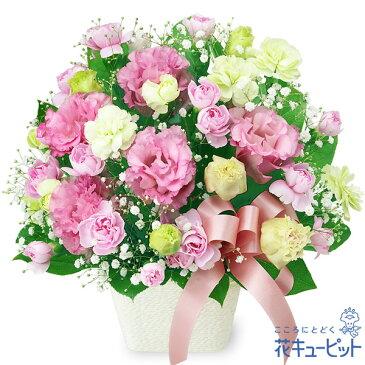 花キューピット【お祝い】トルコキキョウのリボンアレンジメントyc00-511992 誕生日 退職 歓送迎 結婚 記念日 プレゼント 【あす楽対応】