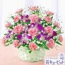 花キューピットのロングセラー!「母の日」人気のギフト!【母の日ギフト】mt01yr-521177スイー...