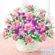 花キューピット【母の日ギフト】mt01yr-521229スイート