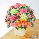 ■母の日 ギフトカーネーションのミックスアレンジメント(色:ミックス・アレンジメント)アレンジメント/ワンサイド 4950 円(税込)母の日のお花といえば、やっぱりカーネーション。ピンク色とオレンジ色を中心に、ふんわりと可愛らしくまとめました。あたたかみのあるリボンがポイントのアレンジメントは、優しさあふれるプレゼントです。お母さんへの感謝はもちろん、愛情や健康を願う気持ちなど、さまざまな想いをカラフルなカーネーションに込めて。2021年母の日。インターネット花キューピット限定厳選フラワーギフト。花のプレゼントが、感謝をまっすぐに伝えます。最終5/7 15時までのご注文で母の日当日までにお届けお届け先近くの花キューピットのお店から、メッセージカード付で直接お届けいたします。※金額にはご利用手数料550円(税込)が含まれております。※配達不能な区域がありますので必ずご確認ください。配達不能地域へのご注文についてはキャンセルとさせていただきます。【主な花材】:薄ピンク・グリーンカーネーション、ピンク・オレンジSPカーネーション【サイズ】:高さ28×幅28×奥行20cm【こんなご用途に】:母の日 2021年 お祝い 記念日 感謝の気持ち お誕生日ご注文に関する注意事項※写真はイメージです。 地域・季節によって、一部花材・花器等が異なる場合がございます。※商品価格には、手数料550円が含まれております。※配達不能な区域がありますので必ずご確認ください。配達不能地域へのご注文についてはキャンセルとさせていただきます。※メッセージカードは無料にてお付けします。※メッセージカードにはお名前は入りません。必要な場合はメッセージ内にご記入ください。 『 無 料 メ ッ セ ー ジ ご 利 用 の 方 へ 』  ●「定型文をご利用の場合」  ・上記商品欄の【メッセージ】を選択 ●「フリー入力をご利用場合」※産直ギフトはご記入していただいても、対応できません。  ・メッセージの入力場所:注文確認画面内の備考欄にございます、メッセージ入力欄にて承ります。  ・メッセージの文字制限:差出人のお名前を含み30文字まで。絵文字、機種依存文字などの文字は使用できません。  ※フリー入力をご利用の場合、上記商品欄の【メッセージ】で選択されたメッセージは記載されませんお届け日について※ご購入商品、お支払い方法により詳細が異なりますのでご注意ください。 ※コンビニ前払いの場合は:入金期限日前迄にご入金ください。※コンビニ前払いの場合、お花のご手配は入金後となります。期日までにお支払いが確認できない場合は、キャンセル扱いとさせていただきます。カード決済エラーによる入金遅延もこれに準じます。 注文後に送付されます【注文確認メール】に記載のある、支払い期日までにご入金ください。■コンビニ前払い際の注意ご注文後に、お支払い受付番号を記載したメールを楽天市場からお送りいたします。お支払いの際にはお支払い受付番号が必要です。※お届け希望日前日を過ぎての入金の場合、入金期限内でもお届け日を変更させていただく場合がございます。予めご了承ください。 母の日商品については変更・キャンセルの受付期間がございます。期間を過ぎますとご対応できませんので、お早めにご連絡ください。※期限については、サービスによってことなります。上記の表または、注文確認メールにてご確認ください。【母の日フラワーギフト商品】変更、キャンセル受付: (変更・キャンセルはこちら:23:59受付分 電話:17:30)※期限以降の変更、キャンセルについてはご対応できませんので予めご了承ください。