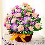 【9月の誕生花(デンファレ等)】秋のピンクアレンジメント