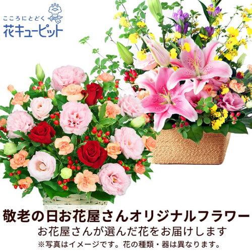 花キューピットmt20yr-map008 アレンジ
