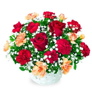 花キューピット【誕生日フラワーギフト】赤バラのアレンジメントya00-512048 花 誕生日 お祝い 記念日 プレゼント 【あす楽対応】