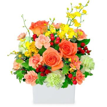 花キューピット【誕生日フラワーギフト・バラ】オレンジバラの華やかアレンジメントya0b-512053 花 ギフト お祝い 記念日 プレゼント【あす楽対応】