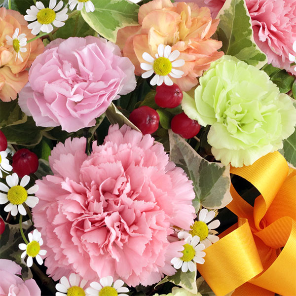 花キューピット【母の日ギフト】カーネーションのミックスアレンジメントmt01yr-613259女性お母さんママ母祖母誕生日プレゼントカーネーション