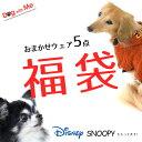 Dog With Me 春夏 おまかせウェア5点パック犬用 ...