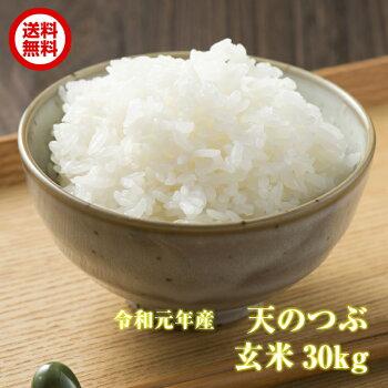 【送料無料】新米天のつぶ玄米30kg福島県産令和元年産キャッシュレス5%還元