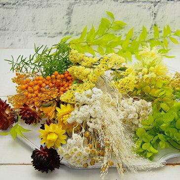 【花材アソートL】ビタミンカラー フラワーハートボックス FlowerHeartBox Size.L(ドライ/プリザーブド)【ハーバリウム/フラワーアレンジメント/リース/サシェ/フローラルワックス/キャンドル/メディスンボトル/アロマワックスに/シルバーデイジー/あじさい】