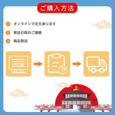 『最終利用可能日は2021年5月8日』Softbank プリペイドデータ専用SIM 10GBに最大180日間(残量確認・容量リチャージ・期間延長不可、完全使い捨て)・・・ 画像2