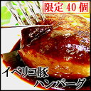 TV「めんたいワイド」で紹介!【1日40個限定】イベリコ豚100%ハンバーグ5個 (1個約110g) /...