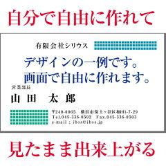 【両面】自分で自由にデザインできる名刺【カラー100枚】【メール便送料無料】【当日発送】名刺 作成 印刷