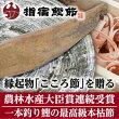 農林水産大臣賞連続受賞坂井商店の本枯れ節