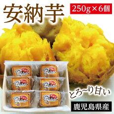 店焼き芋スイーツ(安納芋)250g×6個入