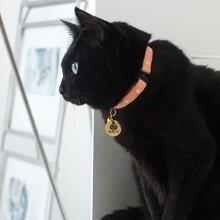 【迷子札】【犬】【猫】iDog&iCatオリジナルメタルネームタグ迷子札くろネコ。なるとちゃんの黒い毛並みにゴールドが映えます