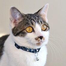 【猫】【首輪】MIX2.3kgの百花ちゃんはブルーを着用