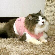 ノルウェージャン4.0kgのスミレちゃんはピンクのDSを着用