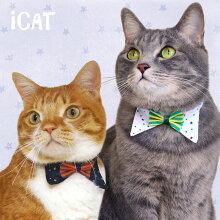 iCatデザインカラースターボーダーリボン。