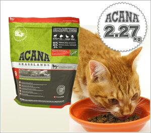 低アレルギーのラム肉ベースのキャットフード。アレルギーが気になる愛猫にオススメ。キャット...