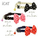 Catgdlc115_s01